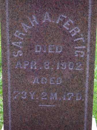 FERTIG, SARAH A. - Wayne County, Ohio | SARAH A. FERTIG - Ohio Gravestone Photos
