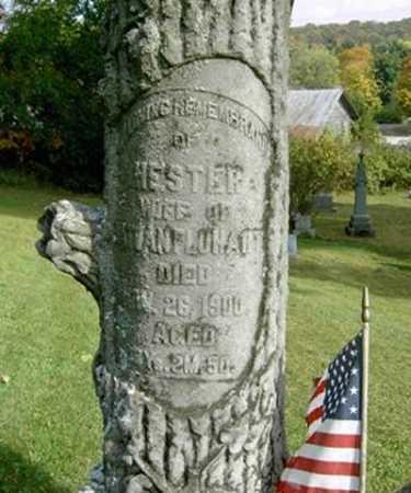 FLUHART, HESTER - Wayne County, Ohio   HESTER FLUHART - Ohio Gravestone Photos