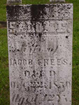 FREES, SALOME - Wayne County, Ohio | SALOME FREES - Ohio Gravestone Photos