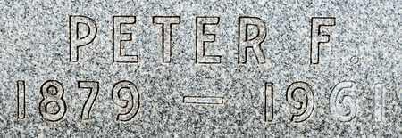GEISER, PETER F - Wayne County, Ohio | PETER F GEISER - Ohio Gravestone Photos