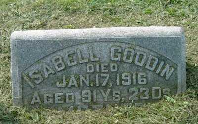 GOODIN, ISABELL - Wayne County, Ohio | ISABELL GOODIN - Ohio Gravestone Photos