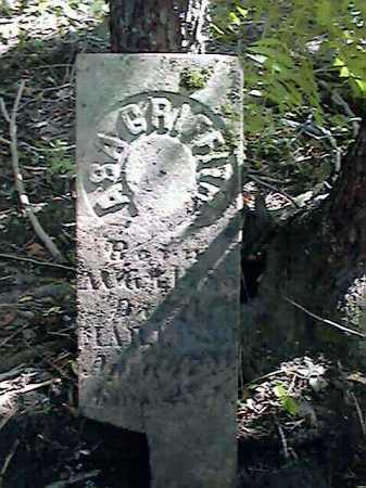 GRIFFITH, ASA - Wayne County, Ohio | ASA GRIFFITH - Ohio Gravestone Photos