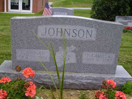 JOHNSON, F. CAMILLA - Wayne County, Ohio | F. CAMILLA JOHNSON - Ohio Gravestone Photos