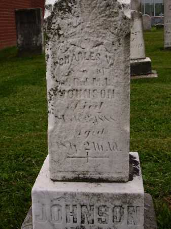 JOHNSON, CHARLES W. - Wayne County, Ohio   CHARLES W. JOHNSON - Ohio Gravestone Photos