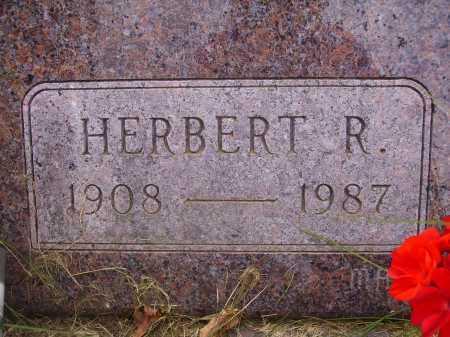 JOHNSON, HERBERT R. - Wayne County, Ohio | HERBERT R. JOHNSON - Ohio Gravestone Photos