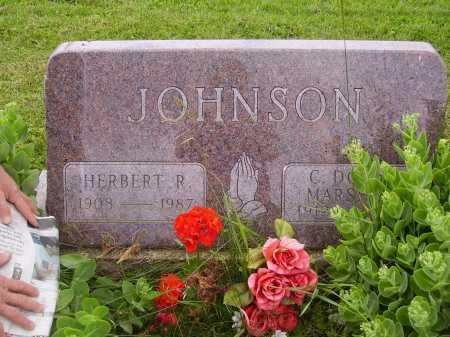JOHNSON, HERBERT R. FAMILY MONUMENT - Wayne County, Ohio | HERBERT R. FAMILY MONUMENT JOHNSON - Ohio Gravestone Photos