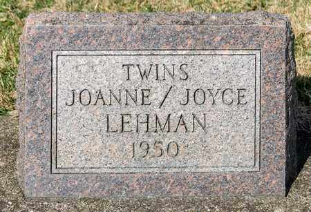 LEHMAN, JOYCE - Wayne County, Ohio | JOYCE LEHMAN - Ohio Gravestone Photos