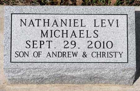 MICHAELS, NATHANIEL LEVI - Wayne County, Ohio | NATHANIEL LEVI MICHAELS - Ohio Gravestone Photos
