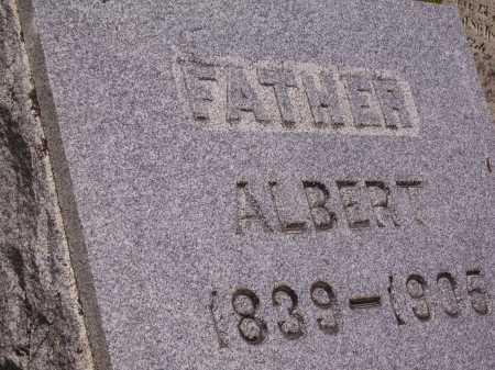 MILLER, ALBERT - Wayne County, Ohio | ALBERT MILLER - Ohio Gravestone Photos