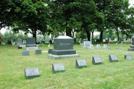 MUSSER, WILLIAM T. - Wayne County, Ohio | WILLIAM T. MUSSER - Ohio Gravestone Photos