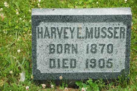 MUSSER, HARVEY E. - Wayne County, Ohio | HARVEY E. MUSSER - Ohio Gravestone Photos