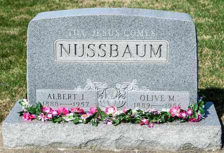 NUSSBAUM, ALBERT J - Wayne County, Ohio   ALBERT J NUSSBAUM - Ohio Gravestone Photos