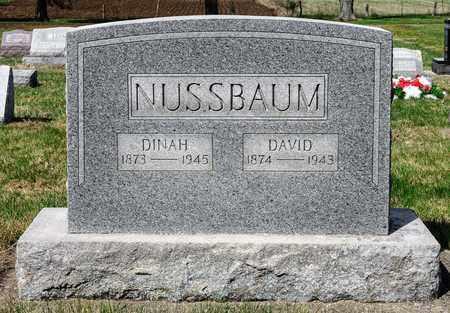 NUSSBAUM, DINAH - Wayne County, Ohio | DINAH NUSSBAUM - Ohio Gravestone Photos