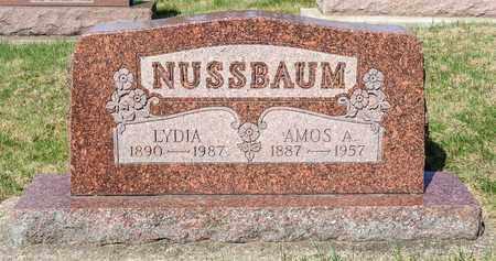 NUSSBAUM, LYDIA - Wayne County, Ohio | LYDIA NUSSBAUM - Ohio Gravestone Photos