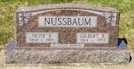 NUSSBAUM, GILBERT A - Wayne County, Ohio | GILBERT A NUSSBAUM - Ohio Gravestone Photos