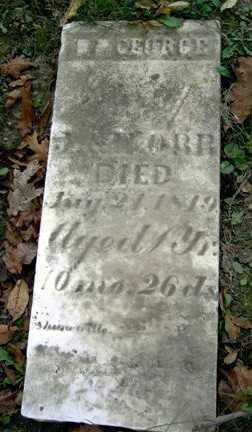 ORR, WM. GEORGE - Wayne County, Ohio | WM. GEORGE ORR - Ohio Gravestone Photos