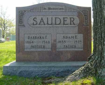 SAUDER, ADAM EMIG - Wayne County, Ohio | ADAM EMIG SAUDER - Ohio Gravestone Photos