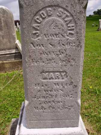 STAHL, JACOB - Wayne County, Ohio | JACOB STAHL - Ohio Gravestone Photos