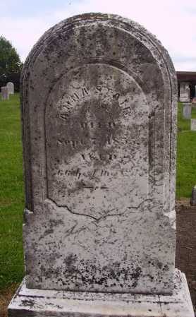 STAIR, ANNA - OVERALL VIEW - Wayne County, Ohio | ANNA - OVERALL VIEW STAIR - Ohio Gravestone Photos