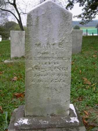 THOMPSON, MARY C. - Wayne County, Ohio | MARY C. THOMPSON - Ohio Gravestone Photos