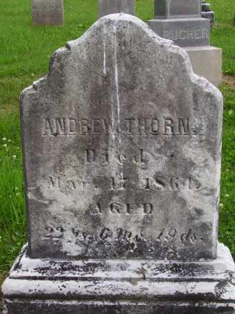 THORN, ANDREW - Wayne County, Ohio | ANDREW THORN - Ohio Gravestone Photos