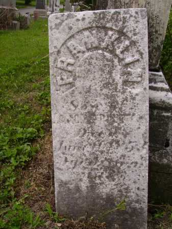TROUTMAN, FRANKLIN - Wayne County, Ohio | FRANKLIN TROUTMAN - Ohio Gravestone Photos