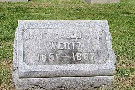 WERTZ, JANE - Wayne County, Ohio | JANE WERTZ - Ohio Gravestone Photos