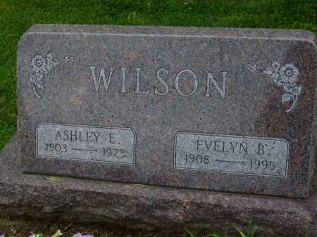 WILSON, ASHLEY E. - Wayne County, Ohio | ASHLEY E. WILSON - Ohio Gravestone Photos