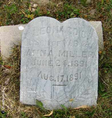 MILLER, LEONARD - Williams County, Ohio | LEONARD MILLER - Ohio Gravestone Photos