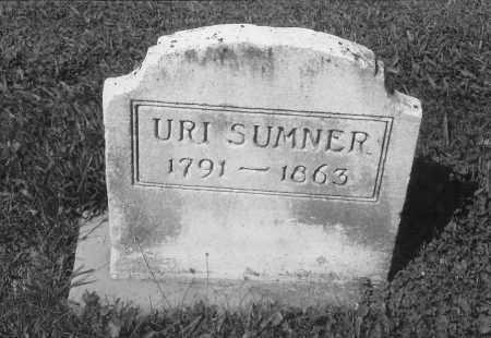 SUMNER, URI - Williams County, Ohio | URI SUMNER - Ohio Gravestone Photos