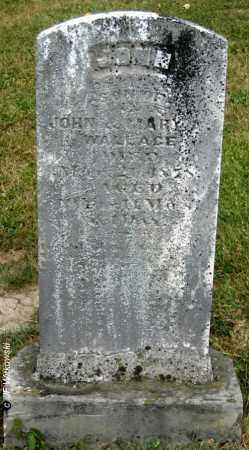 WALLACE, JOHN - Williams County, Ohio | JOHN WALLACE - Ohio Gravestone Photos