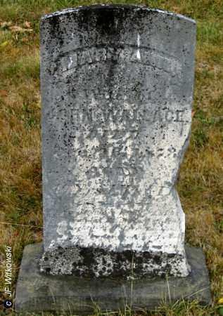 WALLACE, MARY ANN - Williams County, Ohio | MARY ANN WALLACE - Ohio Gravestone Photos