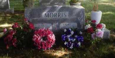MORRIS, ELSIE E. - Wood County, Ohio | ELSIE E. MORRIS - Ohio Gravestone Photos