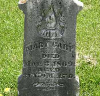 CARY, MARY - Wyandot County, Ohio | MARY CARY - Ohio Gravestone Photos