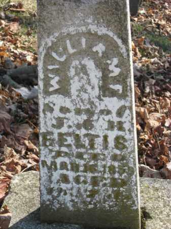 FELTIS, WILLIAM F - Wyandot County, Ohio | WILLIAM F FELTIS - Ohio Gravestone Photos