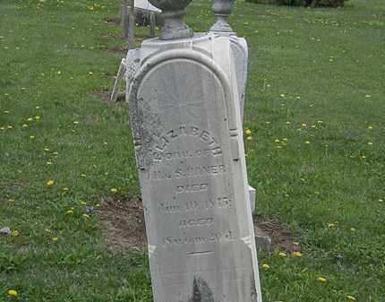 HANER, ELIZABETH - Wyandot County, Ohio | ELIZABETH HANER - Ohio Gravestone Photos