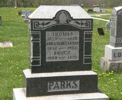 PARKS, THOMAS - Wyandot County, Ohio | THOMAS PARKS - Ohio Gravestone Photos