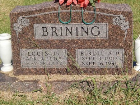 BRINING, LOUIS JR - Alfalfa County, Oklahoma | LOUIS JR BRINING - Oklahoma Gravestone Photos