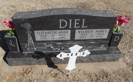 DIEL, ELIZABETH ANNE - Alfalfa County, Oklahoma | ELIZABETH ANNE DIEL - Oklahoma Gravestone Photos