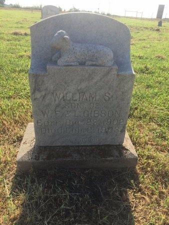 GIBSON, WILLIAM S - Alfalfa County, Oklahoma | WILLIAM S GIBSON - Oklahoma Gravestone Photos