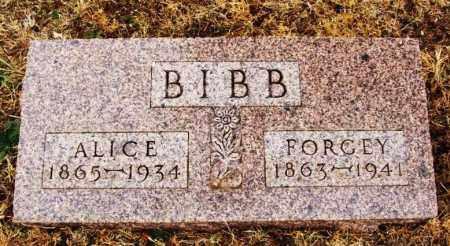 BIBB, FORGEY - Beckham County, Oklahoma | FORGEY BIBB - Oklahoma Gravestone Photos
