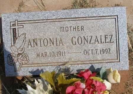 GONZALEZ, ANTONIA - Caddo County, Oklahoma | ANTONIA GONZALEZ - Oklahoma Gravestone Photos