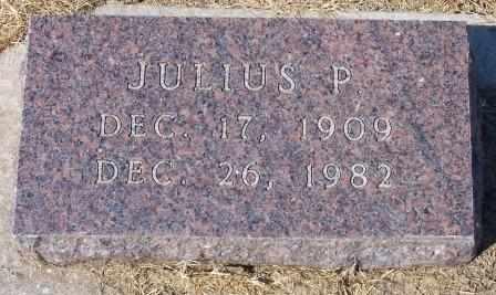 STINE, JULIUS PHILLIP - Canadian County, Oklahoma | JULIUS PHILLIP STINE - Oklahoma Gravestone Photos