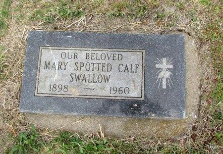 SWALLOW, MARY - Canadian County, Oklahoma | MARY SWALLOW - Oklahoma Gravestone Photos