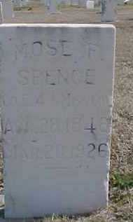 SPENCE, MOSES FOSTER - Carter County, Oklahoma | MOSES FOSTER SPENCE - Oklahoma Gravestone Photos