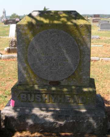 BUSHYHEAD, E W - Cherokee County, Oklahoma   E W BUSHYHEAD - Oklahoma Gravestone Photos