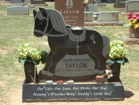 TAYLOR, TRIP SHELTON - Choctaw County, Oklahoma   TRIP SHELTON TAYLOR - Oklahoma Gravestone Photos