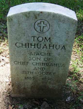 CHIHUAHUA, TOM - Comanche County, Oklahoma | TOM CHIHUAHUA - Oklahoma Gravestone Photos