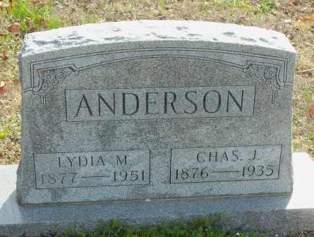 ANDERSON, LYDIA MELVINA - Craig County, Oklahoma | LYDIA MELVINA ANDERSON - Oklahoma Gravestone Photos