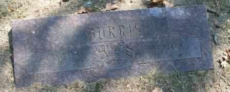 BURRIS, W ALBERY - Craig County, Oklahoma | W ALBERY BURRIS - Oklahoma Gravestone Photos